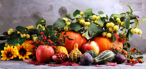 Autumn nature concept. Fall fruit and vegetables on wood. Thanksgiving dinner. Plums and pumpkin with sunflowers and apples.