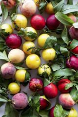Farm fresh peaches
