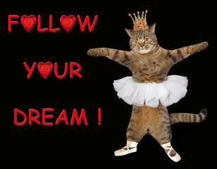 The cat ballerina is dancing. Follow your dream! Black background.