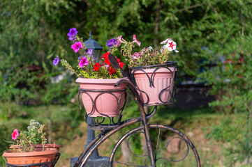 Decorative vintage bicycle with flower baskets in the garden