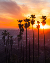 Griffith Park at sunset