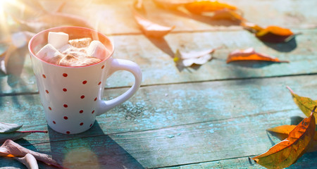 Autumn food background; cup of cocoa with marshmallow and autumn leaves on sunny background