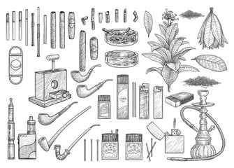 Cigarete accessories, equipment collection, illustration, drawing, engraving, ink, line art, vector