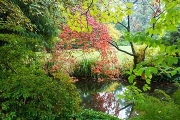 Japanese garden.Leverkusen