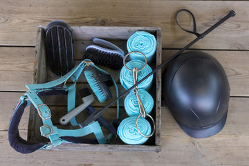 Equipment for horse care and riding: brushes of various sizes and purposes, bridle, whip, helmet, bandages