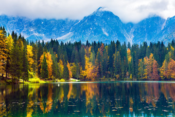 The reflections of multicolored forests