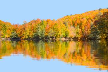 Autumn landscape in (seven lakes) Yedigoller Park Bolu, Turkey