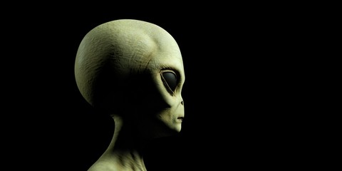 Extremely detailed and realistic high resolution 3d illustration of a grey alien