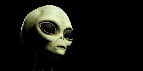 Extremely detailed and realistic high resolution 3d illustration of a grey alien Wall mural