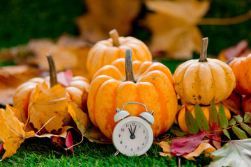 Group of pumpkins and alarm clock on green lawn