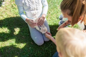Fun with pet rabbit