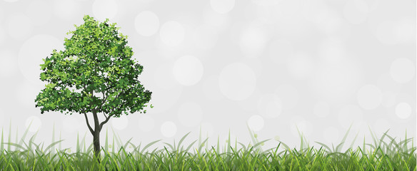 Tree in green field with bokeh background. Vector.