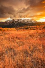 In de dag Oranje eclat Golden fall sunset in the Wasatch Back, Utah, USA.