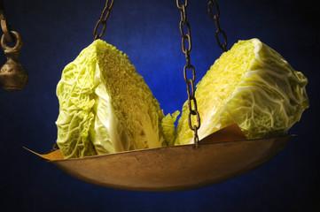 Brassica oleracea sabauda Cavolo verza Wirsing Savoy cabbage ft71090446 野甘蓝 Chou de Milan