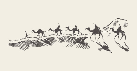 Caravan of camels desert drawn vector illustration