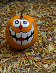 A Hand-Painted Grinning Halloween Pumpkin Surrounded by Dried Leaves