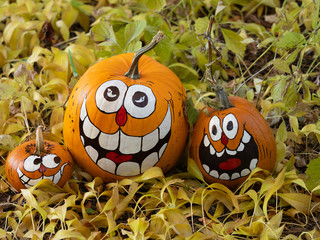 Three Smiling Painted Halloween Pumpkins in a Row Surrounded by Golden Dried Leaves