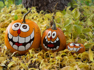 Three Smiling Painted Halloween Pumpkins with a Tree Trunk in the Background
