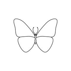 Vector illustration. Line style butterfly. Simple line. Template.