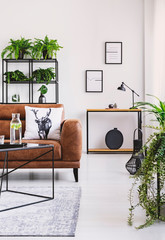 Vertical view of elegant living room with brown leather sofa with pillow, table with carafe and shelf full of green plants