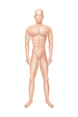 Vector 3d realistic male mannequin, full body of man. Human figure for training, athlete equipment isolated on white background. Naked doll, manikin for showcase of boutique, clothing store.