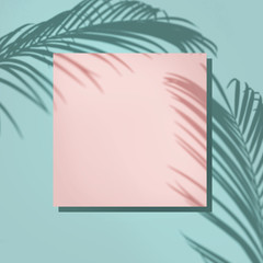 Wall Mural - Creative layout made of colorful tropical leaves on white background. Minimal summer composition. Exotic concept with copy space. Border arrangement.