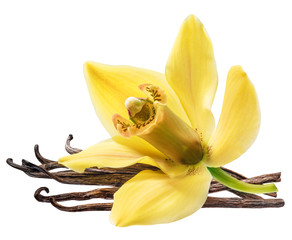 Photo sur Plexiglas Orchidée Dried vanilla pods and orchid vanilla flower on white background.