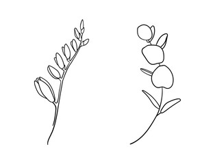 Flowers isolated on white background. Black and white vector illustration. Hand drawn.