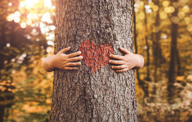 Nature lover, close up of child hands hugging tree with copy space Fototapete