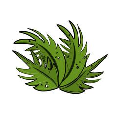 Leaves tropical cartoon
