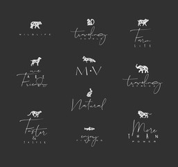 Animals mini floral graphic signs black