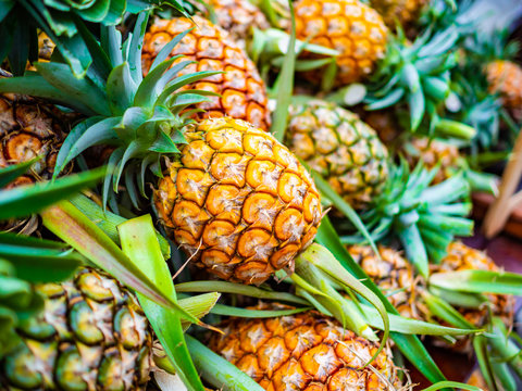 Pineapple fresh in the market in thailand
