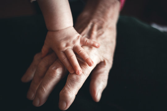 baby hand on old hand