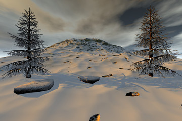Snowy mountain, an alpine landscape, beautiful trees and a cloudy sky.