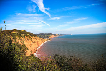 Sidmouth coastline and cliffs