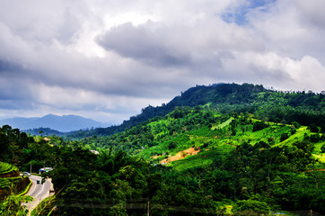 Stormy sky over the slopes of tea plantations. Nuwara Eliya. Sri Lanka. Asia.