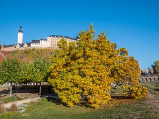 Schloss in Greiz Herbst