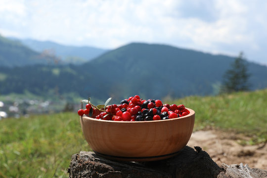 Bowl of fresh ripe berries on stump in mountains