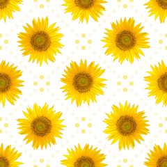 Seamless pattern with big bright sunflowers and dots on white background