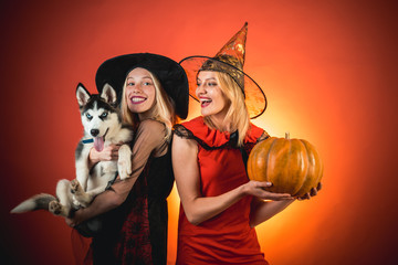 Festive halloween design. Two beautiful blonde women in carnival costumes. Two emotional young women in halloween costumes on party over orange background with pumpkin. Halloween copy space.