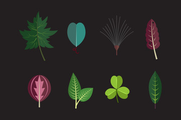 Season forest plant leaves collection vector icons Exotic tropical leaf icons set.