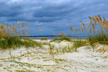 St. Simons Island, GA Sand Dunes