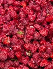 Fresh raspberries background closeup photo