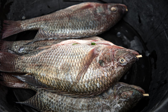 Close up group of fish prepared for cooking in street of Bangkok, Thailand