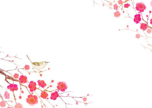梅の花 寒中見舞い 年賀状 背景 水彩 イラスト