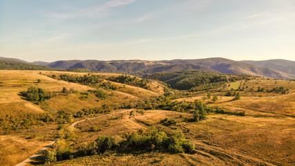 Yellow fields in national park Cheile Nerei Beusnita, near the Sasca Montana in Romania