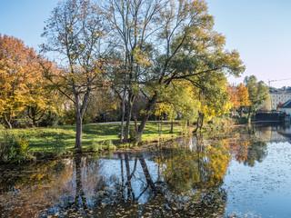Der Herbst am Teich in allen Farben