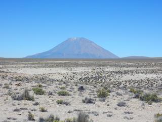 Salinas y Aguada Blanca National Reserve near Arequipa, with Misti volcano, Peru