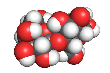 Space-filling model of a lactose molecule. Atoms are coloured according to convention (hydrogen-white, oxygen-red, carbon-grey).