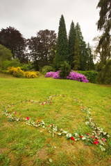 Well-tended garden with color flowers and roses lying on the grass in the shape of heart